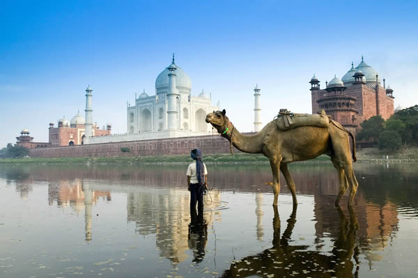 Images of  INDIA & NEPAL & DUBAI